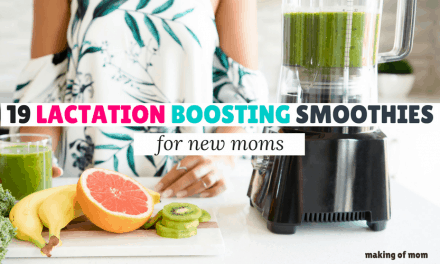 19 Delicious Lactation Smoothies to Boost Your Milk Supply