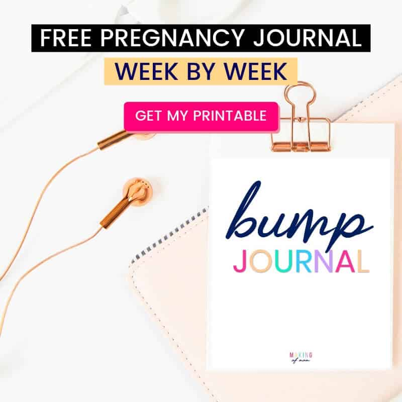 pregnancy-planner