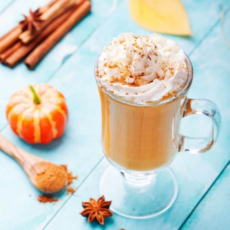 Pumpkin Spice Lactation Smoothie - The Ultimate Fall Smoothie
