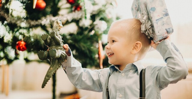Dinosaur Baby Toys and Gifts for Babies and Toddlers