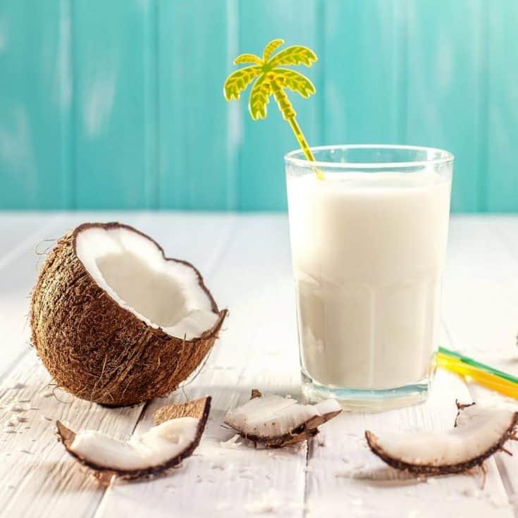 Coconut Milk Lactation Smoothie