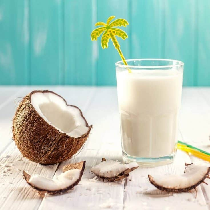 Coconut Milk Lactation Smoothie